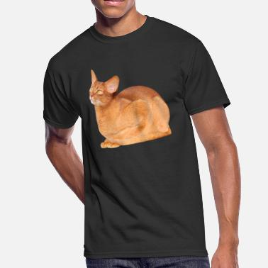 Abyssinian Cat ABYSSINIAN CAT - Men's 50/50 T-Shirt
