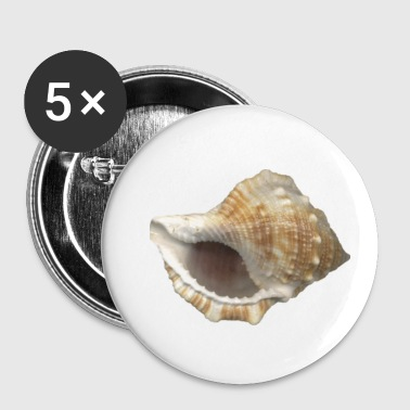 conch - Small Buttons