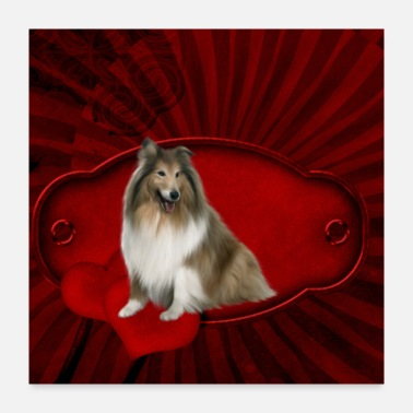 Beautiful Beautiful collie - Poster 24x24