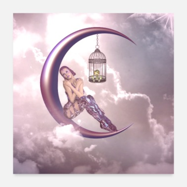 Moon Beautiful fairy with bird on a moon - Poster 24x24