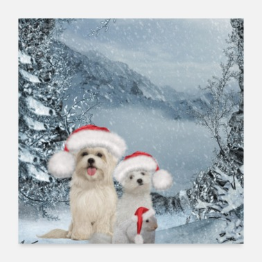 Animal Christmas, cute dog and squirrel with christmas ha - Poster