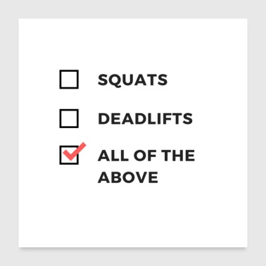 Squats and Deadlifts Gym Humor Attire - Poster 24x24