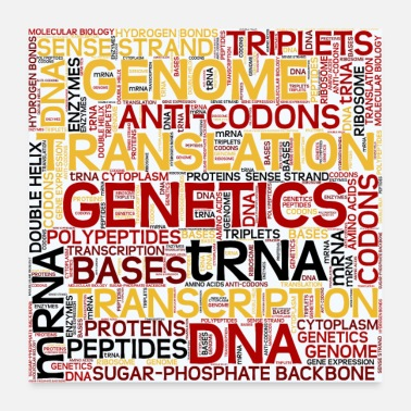 Attractive MOLECULAR BIOLOGY - Protein Synthesis - Poster 24x24