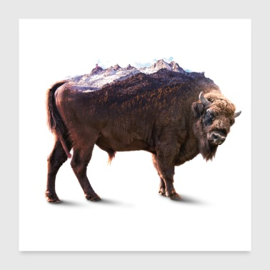 Bisons rock - Poster 24x24