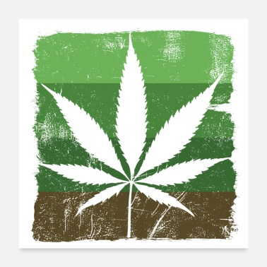 Cannabis Cannabis leaf Sativa green scratched - Poster 24x24