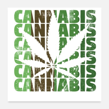 Hashish Cannabis hemp leaf scratched - Poster
