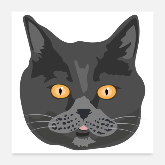 Cat Face Posters - Cat British Shorthair Cat Face - Gift Idea - Posters white