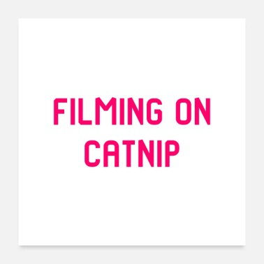 Stunt Filming on Catnip Pet Stunt Coordinator Quote - Poster