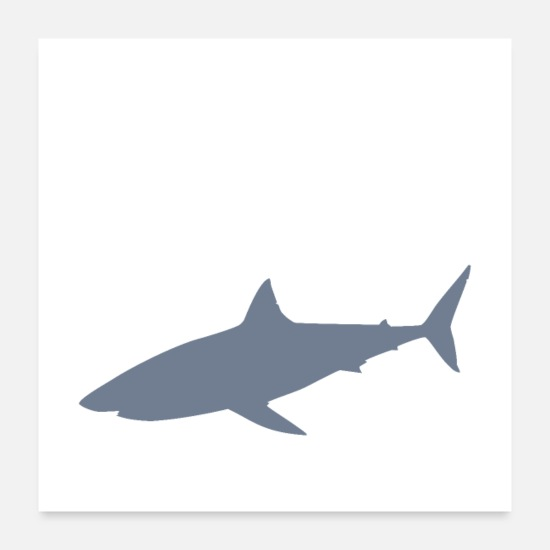 Love Posters - swim with great whites - Posters white