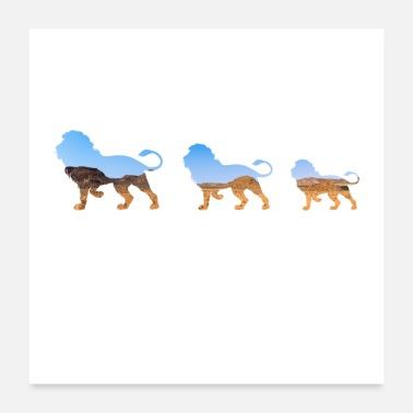 Africa africa lion - Poster