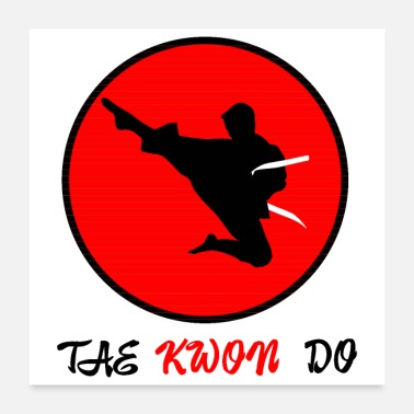 Tae Kwon Do Martial Arts Tae Kwon Do flying kick - Gift Idea - Poster