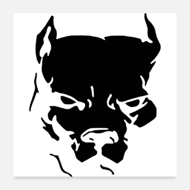 Graphics American Pitbull - Poster