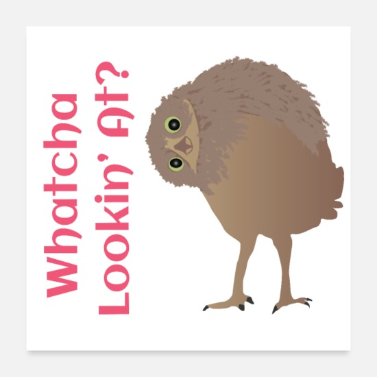 Birthday Posters - Owl - Whatcha Lookin At Collection - Posters white