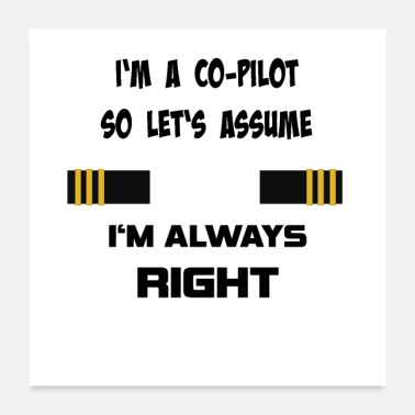 Pilot Co-pilot, for pilots and aviation enthusiasts - Poster