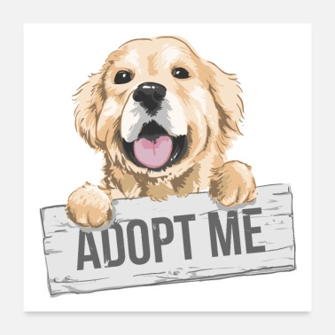 Cute Golden Retriever Adopt Me Golden Retriever Puppy Cute Dog - Poster