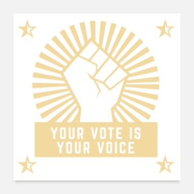 Government 2020 Elections Your Vote Is Your Voice print - Poster
