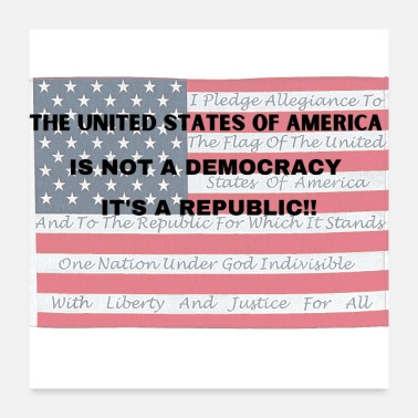 Democracy We are a Republic - Poster