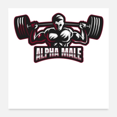 Pull Up Alpha Male Fitness Barbell Graphic - Poster