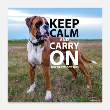 Provocation Poster KEEP CALM - Poster 24x24