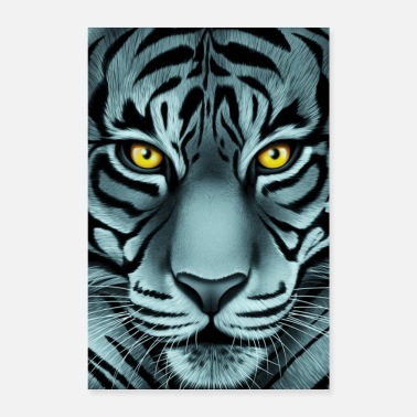 Tiger Shark Stunning White Face Tiger - Poster 8 x 12