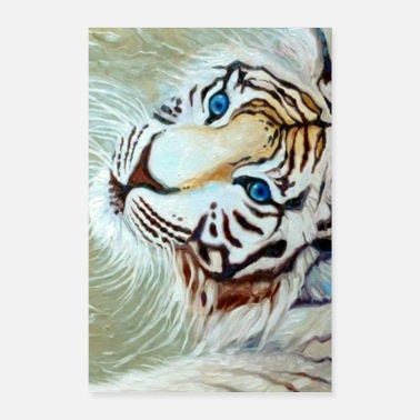 Tiger blue eyed white tiger on silver - Poster 8x12