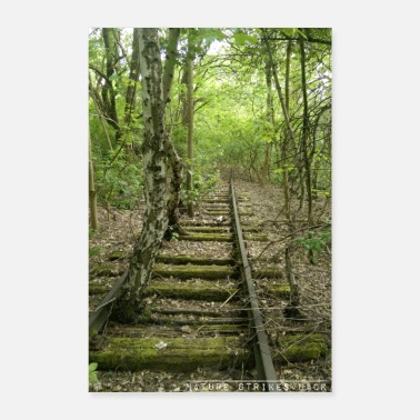 Railroad Nature strikes back - tracks overgrown in forest - Poster