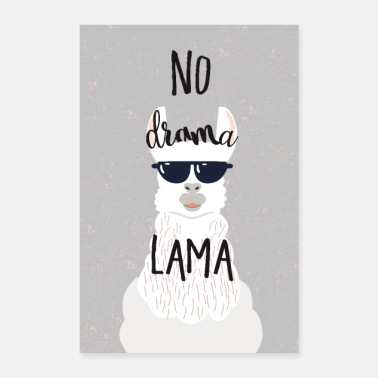 Animal no drama lama - Poster 8x12