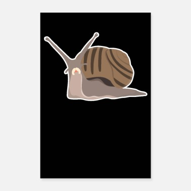 Snail Snail Art Illustration Slug Outfit Gift Snails - Poster