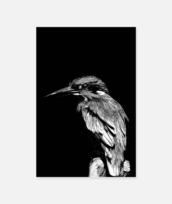 Nature Posters - Kingfisher v2 vabw - Posters white