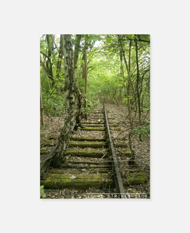 Nature Posters - Nature strikes back - tracks overgrown in forest - Posters white