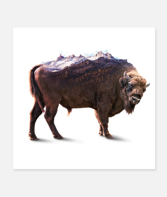 Double Exposure Posters - Bisons rock - Posters white