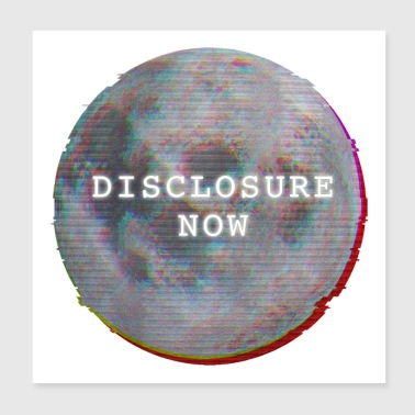 Disclosure Now Glitch Moon - Poster 8x8