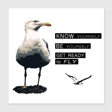 Seagull - Philosophy of LIFE - Poster 8x8