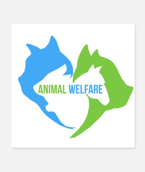 Horse Fan Posters - Animal Welfare Cat Dog Horse Rabbit - Gift idea - Posters white