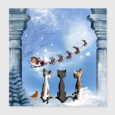 Christmas, cute cats looking in the sky - Poster 8x8