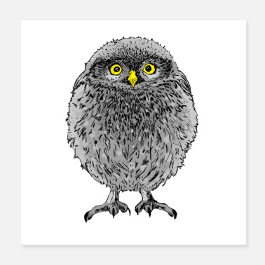 Owl baby owl - Poster
