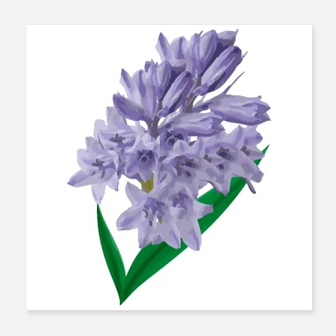 Spring Break Flower Spring Bluebell Violet - Gift Idea - Poster