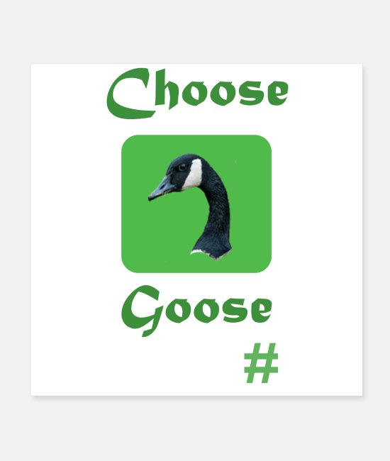 Nature Posters - Choose Goose - Posters white