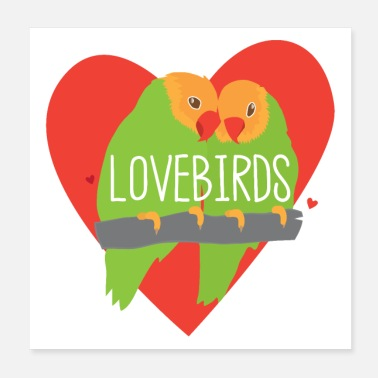 Budgie Peachface Lovebirds in a red heart - Poster