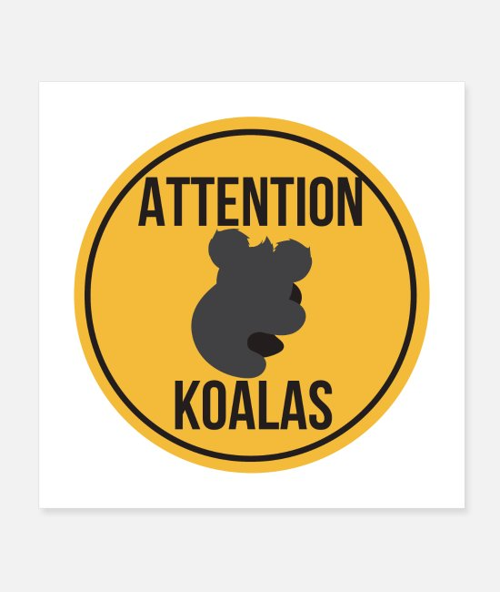 Aussie Posters - Koala Attention Koalas Funny Gift Idea - Posters white