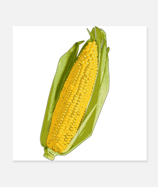 Nature Posters - Corn corncob ,YELLOW, - Posters white