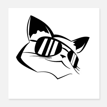 Sunglasses cool cat with sunglasses - Poster