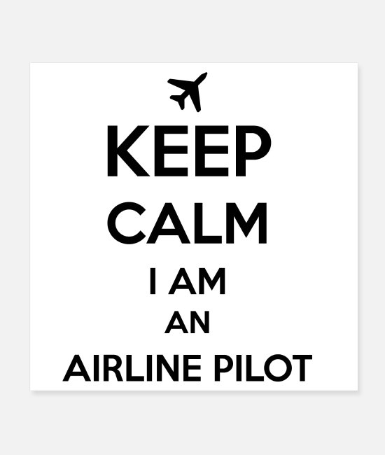 Pilot Posters - Airline Pilot - Posters white