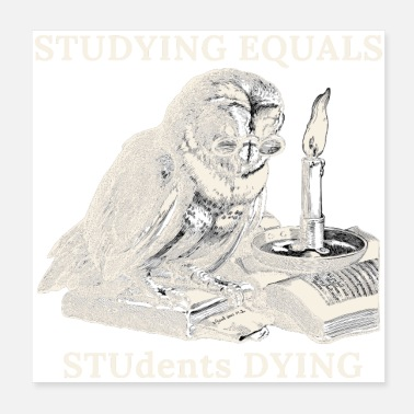Highschool Studying Equals StuDents Dying - Poster