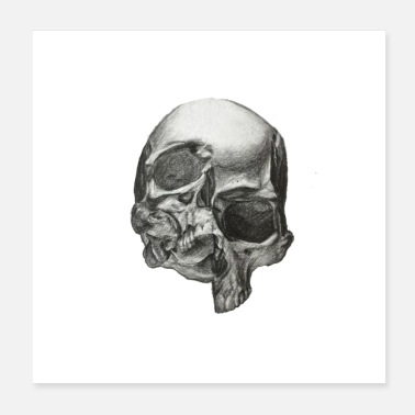 Painting painting skull - Poster