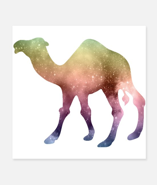 Nature Posters - camel and galaxy nature - Posters white