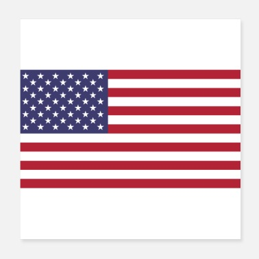 States Flag American American Flag of United States - Poster