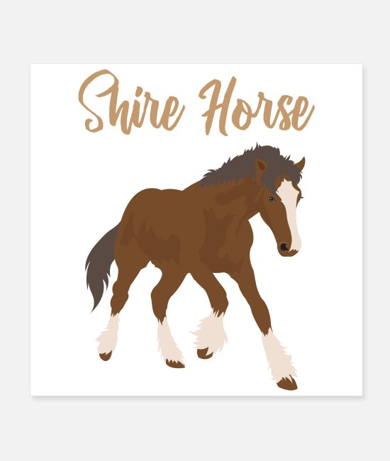 Riding Posters - Shire Horse Lover Gift Idea - Posters white