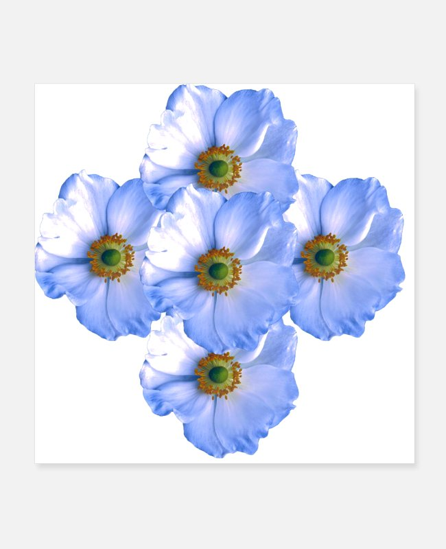 Petals Posters - Light summer flower bouquet #print #flowers # desi - Posters white