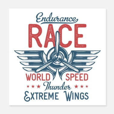 Endurance Aviation Race - Poster